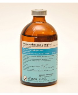 Dexamethasone 2 mg/ml 100 ml*