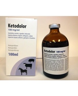 Ketodolor 100 mg/ml 100 ml*