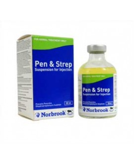 Pen-Strep 100 ml (Norbrook)*