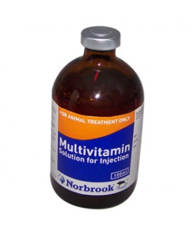 Multivitamin inj. 100 ml*
