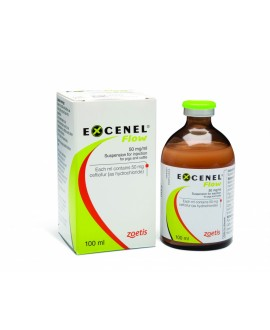 Excenel EVO 50 mg/ml 100 ml*
