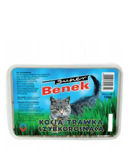 Certech Super Benek 150 g zāle kaķiem ar kastīti